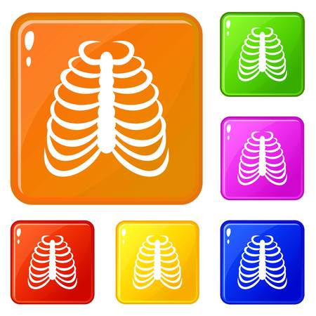Rib cage icons set vector color 向量圖像