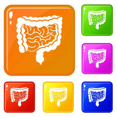Intestines icons set vector color