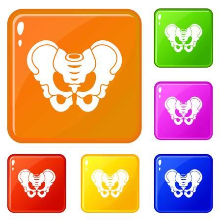 Pelvis icons set vector color