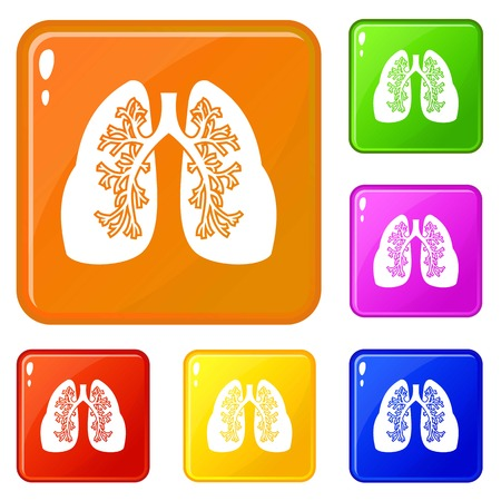 Lungs icons set collection vector 6 color isolated on white background