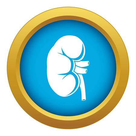 Kidney icon blue vector isolated on white background for any design