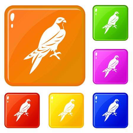Falcon icons set collection vector 6 color isolated on white background