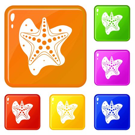 Sea star icons set vector color