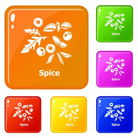 Spice icons set collection vector 6 color isolated on white background