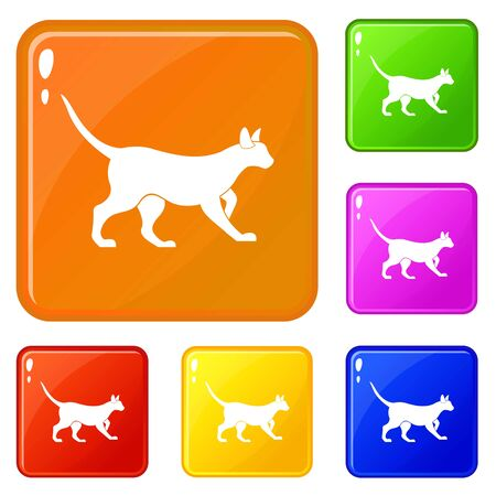 Cat icons set collection vector 6 color isolated on white background