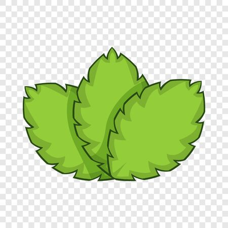 Sage herb icon. Cartoon illustration of sage herb vector icon for web design