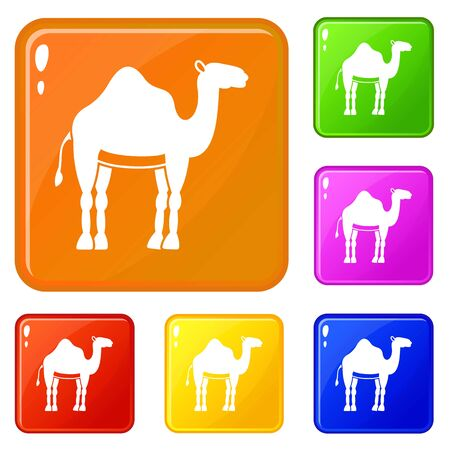 Camel icons set vector color 向量圖像