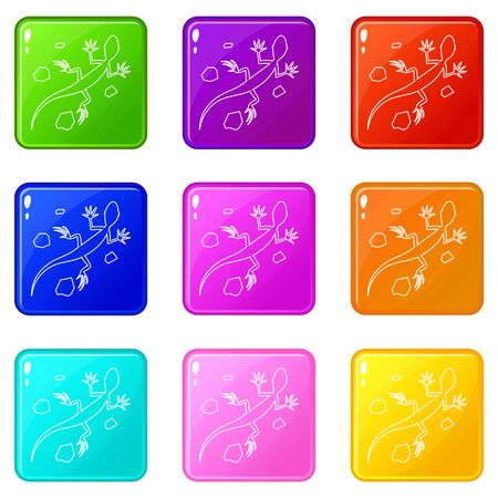 Salamander icons set 9 color collection isolated on white for any design