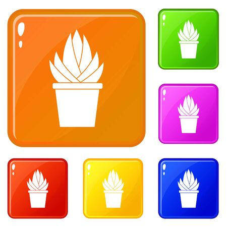 Aloe vera plant icons set collection vector 6 color isolated on white background