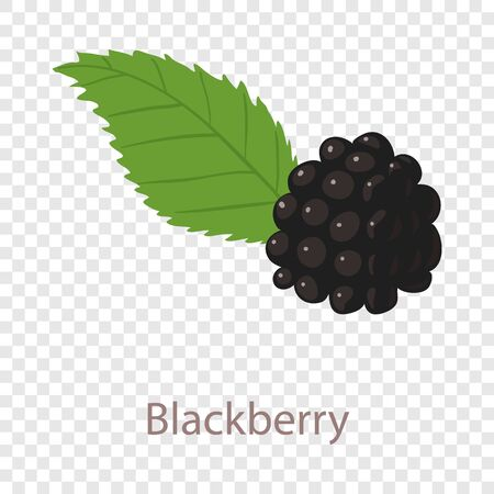 Black berry icon, isometric 3d style Illustration