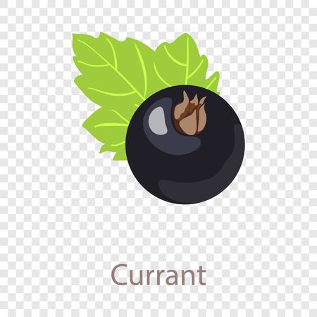 Currant icon. Isometric illustration of currant vector icon for web