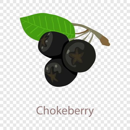 Chokeberry icon. Isometric illustration of chokeberry vector icon for web