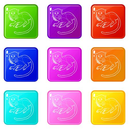 Imperial tamarin icons set 9 color collection Banque d'images - 128000880
