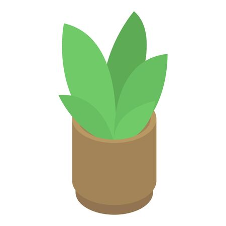 Office flower pot icon. Isometric of office flower pot vector icon for web design isolated on white background