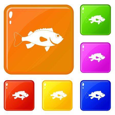 Sea bass fish icons set vector color