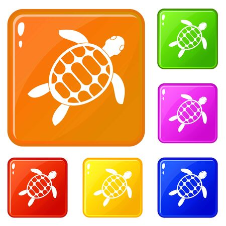 Turtle icons set vector color Illustration
