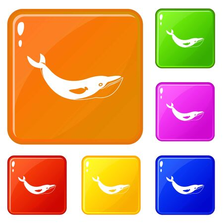 Whale icons set vector color