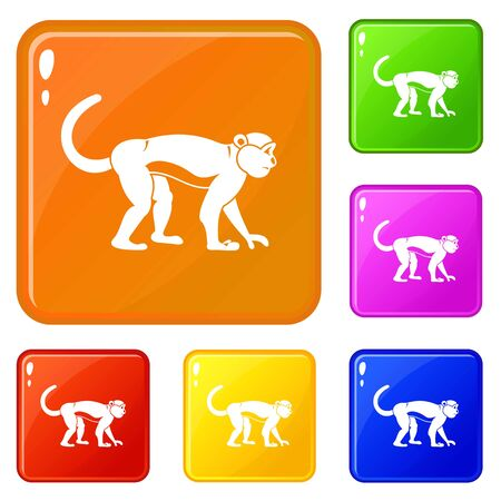 Macaque icons set collection vector 6 color isolated on white background