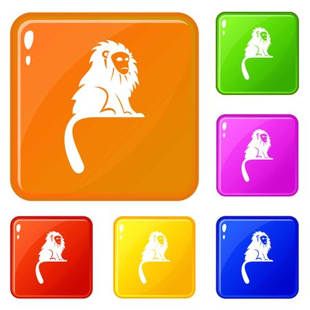 Hairy monkey icons set collection vector 6 color isolated on white background