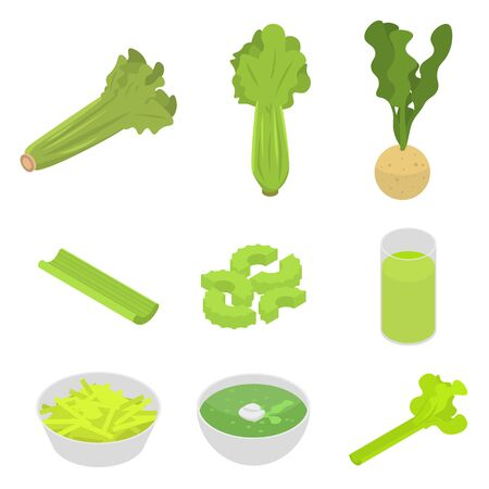Celery icons set. Isometric set of celery vector icons for web design isolated on white background