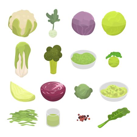 Cabbage icons set. Isometric set of cabbage vector icons for web design isolated on white background