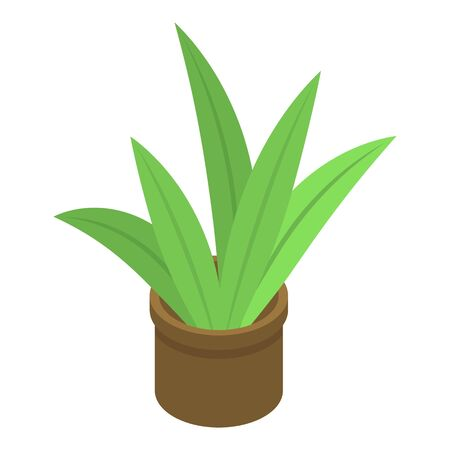 Succulent plant pot icon, isometric style Stock Illustratie