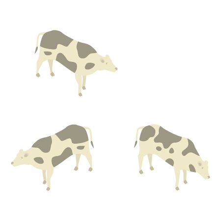 Farm milk cows icon, isometric style