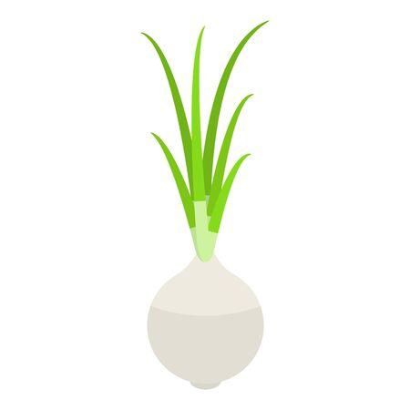 White farm onion icon. Isometric of white farm onion vector icon for web design isolated on white background 일러스트
