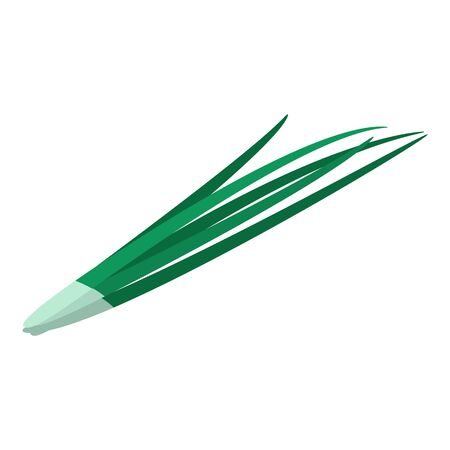 Green long onion icon. Isometric of green long onion vector icon for web design isolated on white background