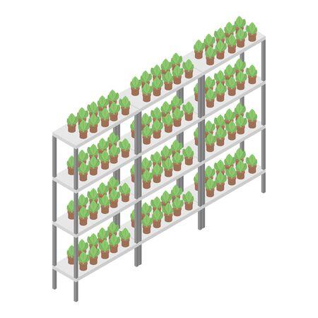Houseplant rack icon, isometric style