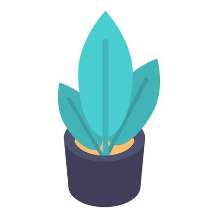 Plant pot icon, isometric style