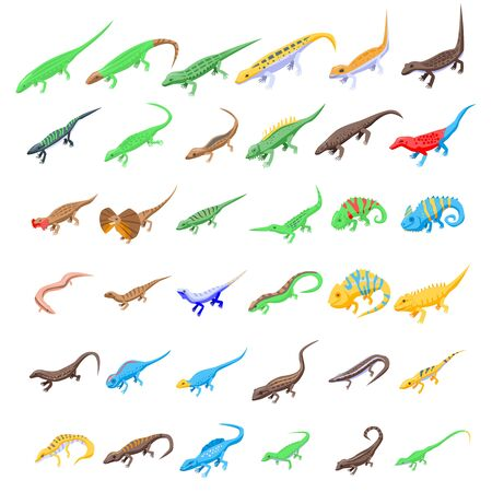 Lizard icons set, isometric style Archivio Fotografico - 134489632