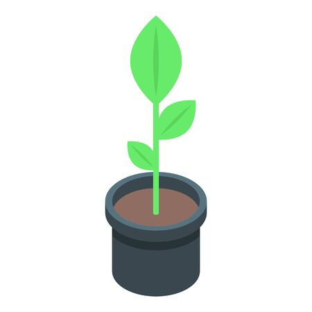 Plant pot icon. Isometric of plant pot vector icon for web design isolated on white background