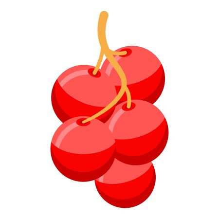 Red berry branch icon, isometric style 向量圖像