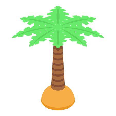 Palm tree icon, isometric style