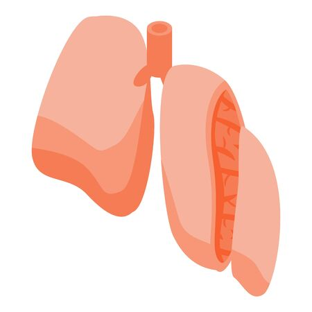 Section lungs icon, isometric style