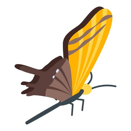 Yellow brown butterfly icon. Isometric of yellow brown butterfly vector icon for web design isolated on white background
