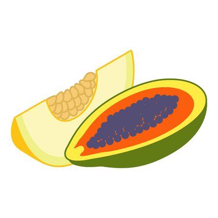 Exotic fruit icon. Isometric illustration of exotic fruit vector icon for web