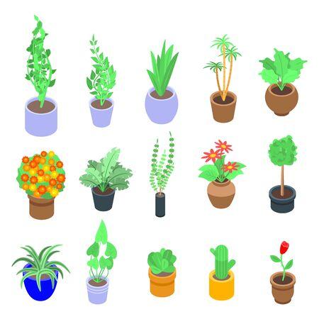 Zimmerpflanzen-Symbole gesetzt. Isometrischer Satz Zimmerpflanzenvektorikonen für das Webdesign lokalisiert auf weißem Hintergrund
