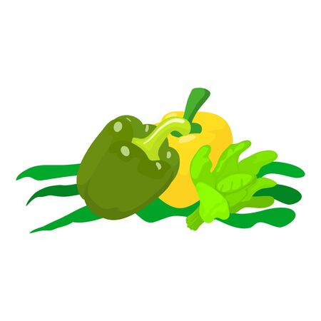 Diet food icon. Isometric illustration of diet food vector icon for web