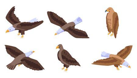 Eagle icons set, isometric style Illustration