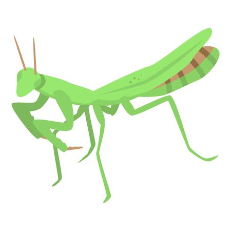 Green mantis icon. Isometric of green mantis vector icon for web design isolated on white background