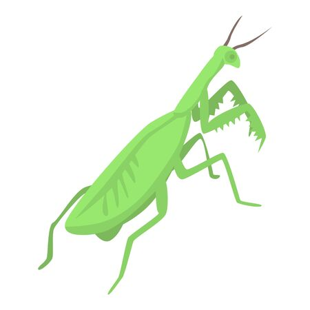 Female mantis icon. Isometric of female mantis vector icon for web design isolated on white background Vettoriali