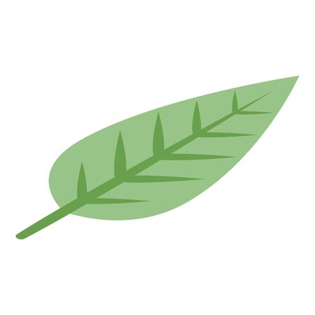 Soursop leaf icon. Isometric of soursop leaf vector icon for web design isolated on white background Illustration