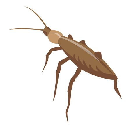 Pest cockroach icon. Isometric of pest cockroach vector icon for web design isolated on white background Illustration