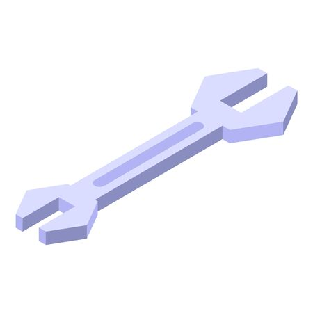 Product manager steel key icon, isometric style