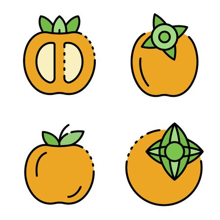 Persimmon icons set line color vector