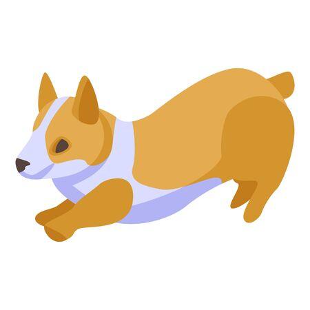 Playing corgi dogs icon, isometric style