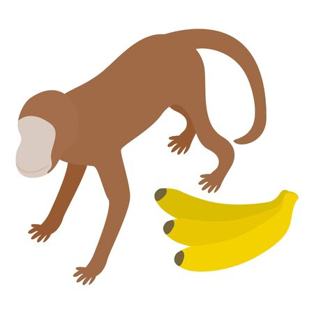Monkey icon icon, isometric style