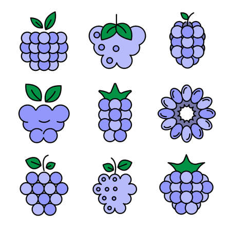 Raspberry icons vector flat